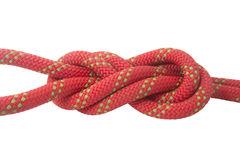 double figure eight knot